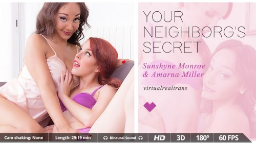 Your Neighborg's Secret – VR Movie from VirtualRealTrans